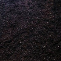 Black Forest Mulch